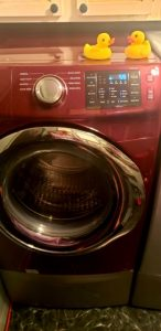 clean front load washer mold